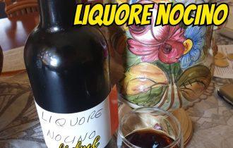 Nocino il liquore fatto in casa